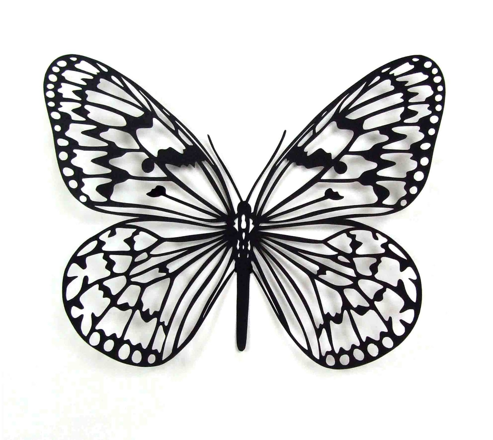 Essay On Butterfly