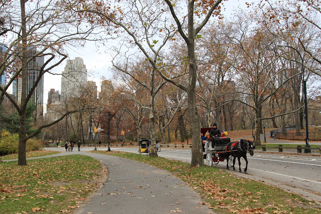 Carriage ride at Central Park in Manhattan, New York, USA