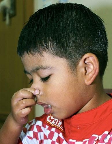 Image Result For Hidung Berdarah Pada Anak Dewasa