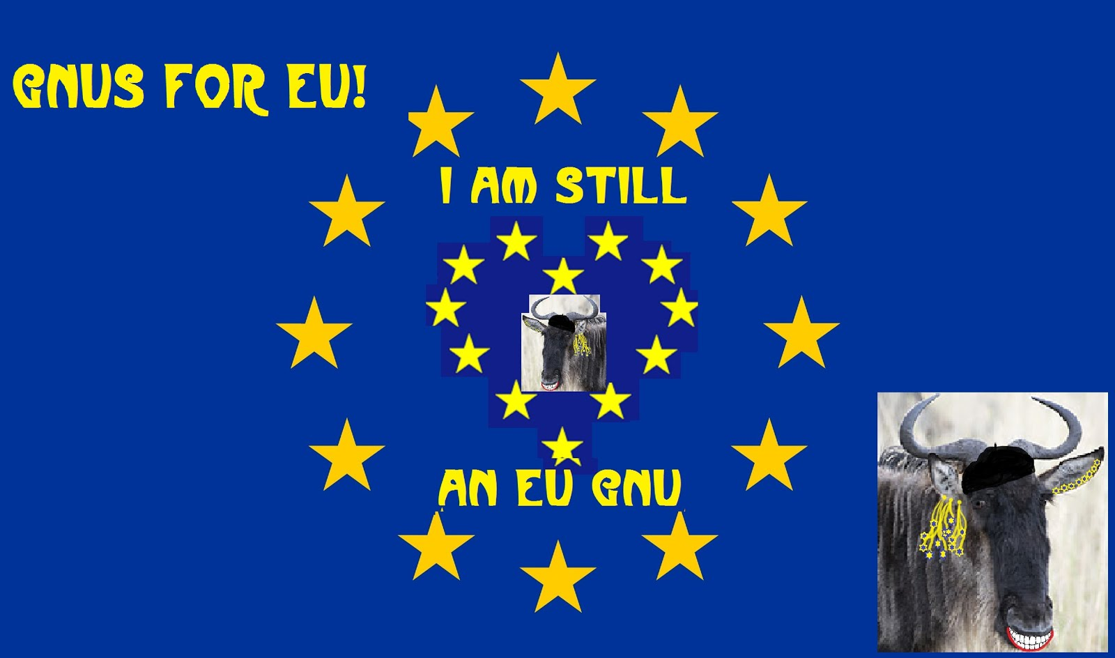 Gnus for the EU 2016