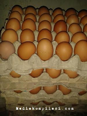 Telor Ayam