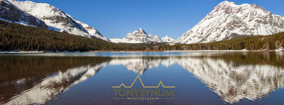 sinopah and rising wolf mountains reflecting in two medicine lake, glacier national park