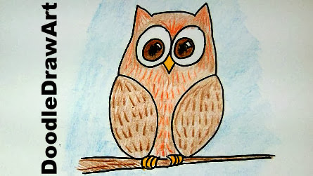 How to draw a cartoon owl