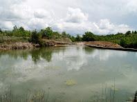L'embassament del Viver de l'Aigua a la Rasa de Torredeflot