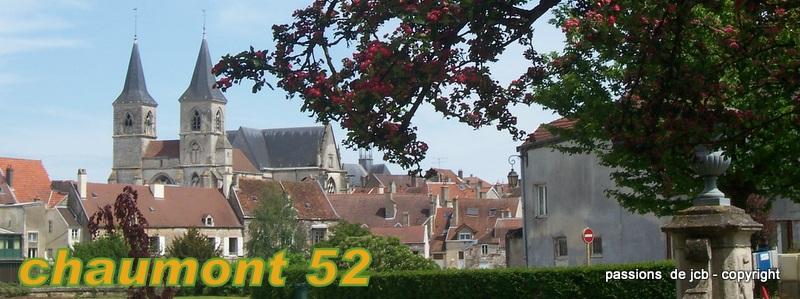 Chaumont haute marne vue sur la basilique saint jean for Chaumont haute marne