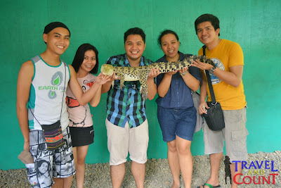 Baby Crocodile at Crocodile Park Palawan