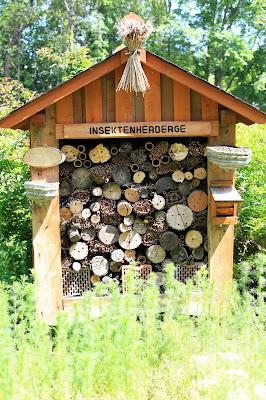 viele (Flug-) Insekten finden hier Zuflucht