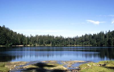 Lago Tittisee, na Floresta Negra, Alemanha