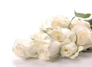 flowerputih.blogspot.com
