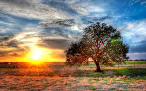 Tentang doi dan Puisi: Harapan Baru