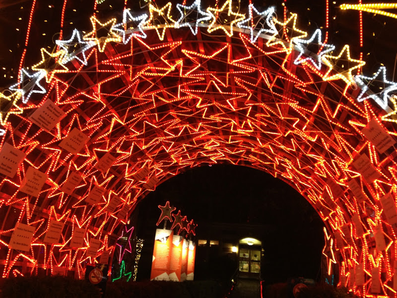 Christmas Lights of Hope Star Tunnel
