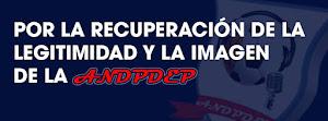COLECTIVO ASOCIADOS DE ANDPDEP