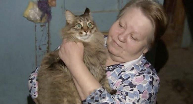 Marsha, Kucing Hebat ini Menyelamatkan Anak yang Dibuang Tempat Sampah