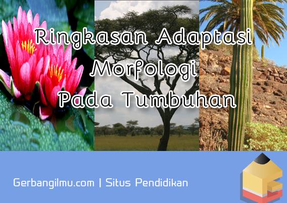 Ringkasan Adaptasi Morfologi Pada Tumbuhan