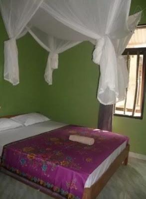 desain kamar tidur penginapan coconut