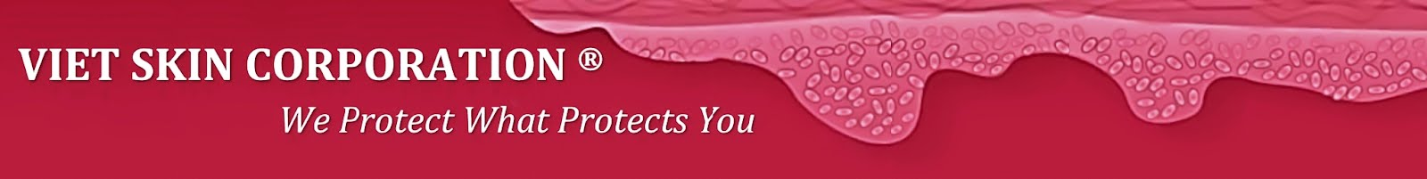 Viet Skin Corporation - We Protect What Protects You
