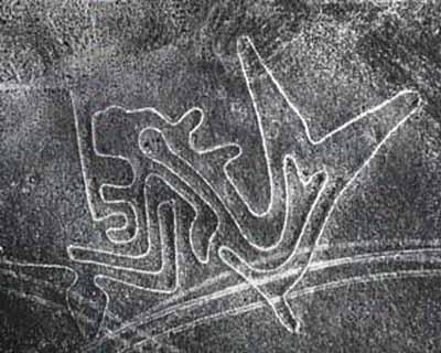 glifos de Nazca