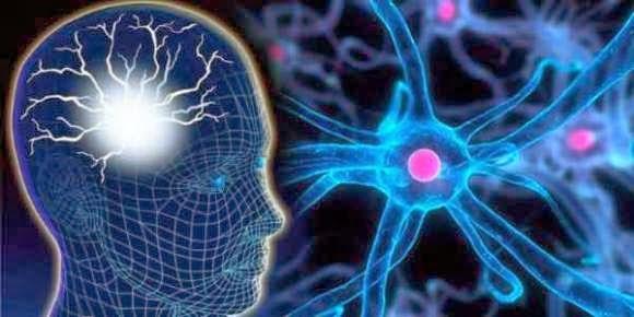 Obat Pembuluh Darah Pecah Di Otak