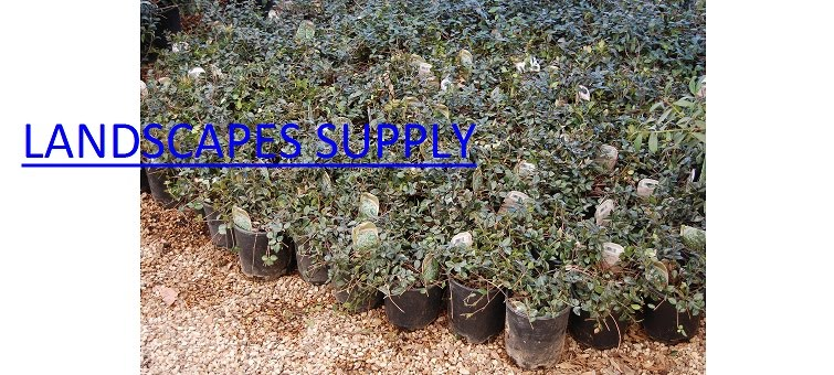 Landscapes Supply