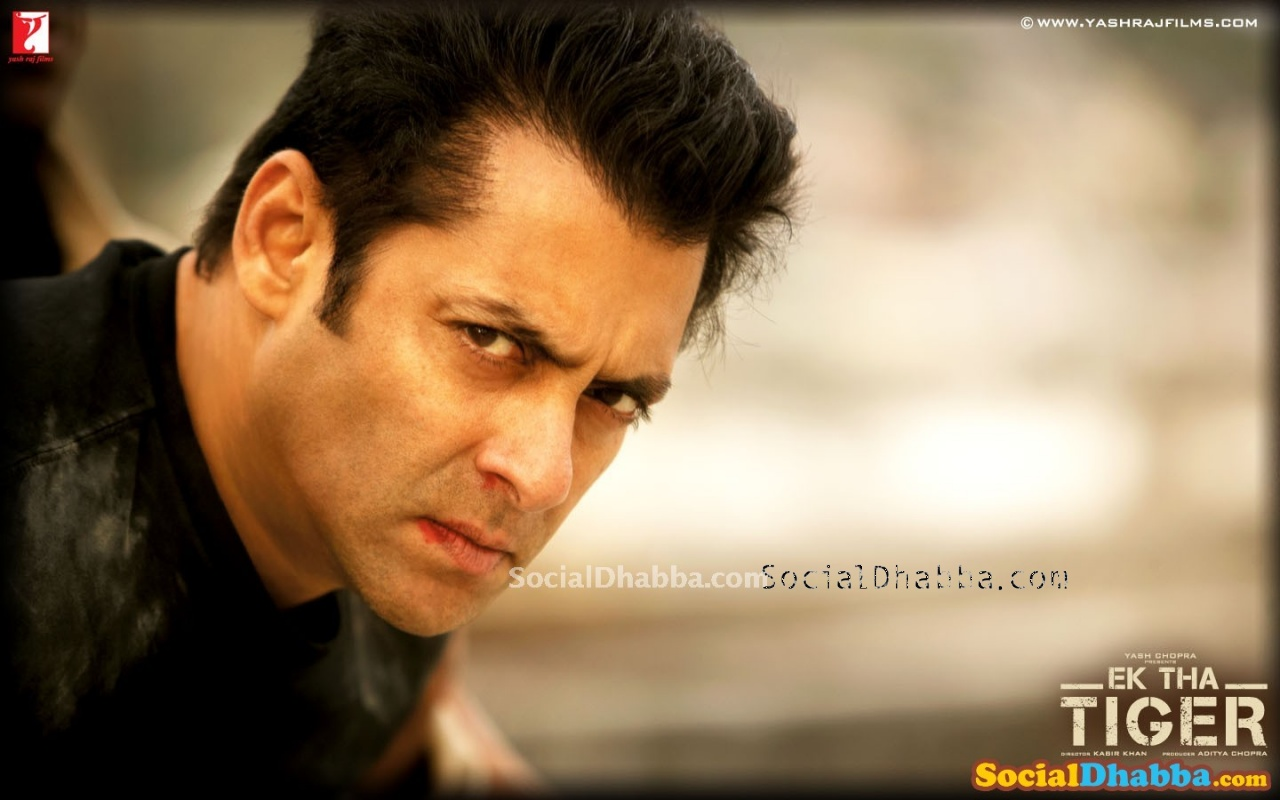 Salman Khan Wallpapers 1   funniest wallpaper ever 2013