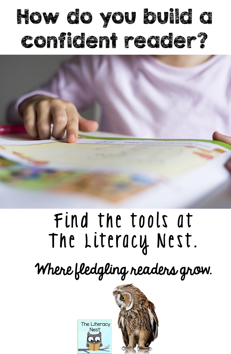 https://www.teacherspayteachers.com/Store/Emily-Gibbons-The-Literacy-Nest