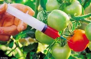suntik tomato untuk nampak merah sempurna