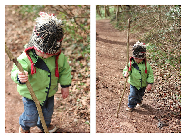outdoor walking stick
