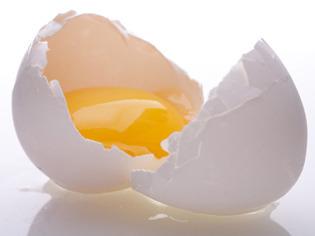 Virus berkembang dengan baik pada binatang Penemuan Telur yang Memproduksi Antibodi oleh Prof. Retno D. Soejoedono