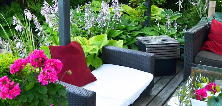 Mysig lummig lounge-miljö