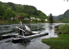 Smolt trap at Bolstad