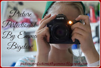 Picture Perfectionist By Emma Bigelow