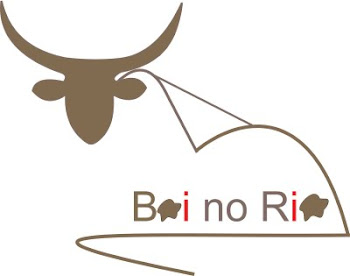 Logo Boinorio