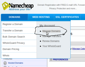 Manage Domain namecheap