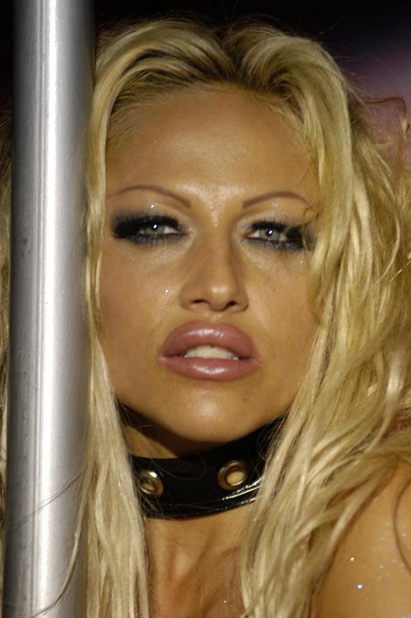 ... the hardcore, updated version of Pamela Anderson.
