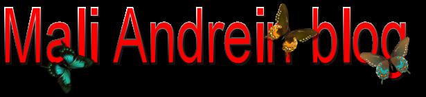 Mali Andein blog