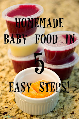 http://www.theweatheredpalate.com/2014/11/homemade-baby-food-in-5-easy-steps.html