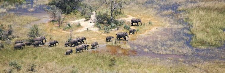 Okavango Delta Aerial