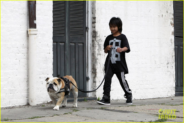 The Jolie-Pitt family owns a large bulldog with the awesome name