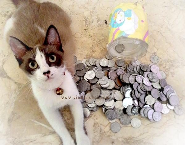 Tabungan uang koin receh