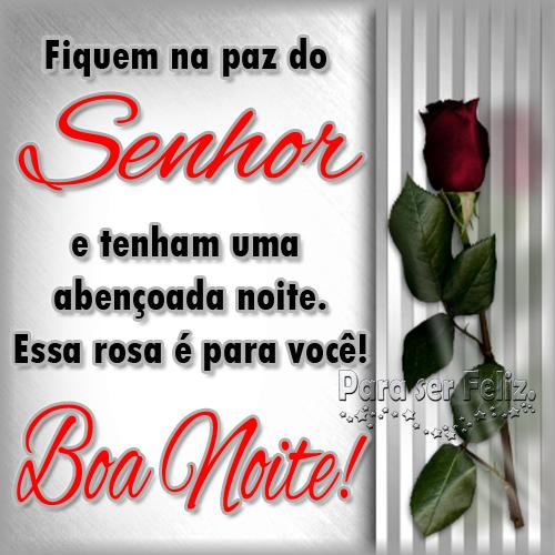 Esta rosa é para você! Boa Noite!