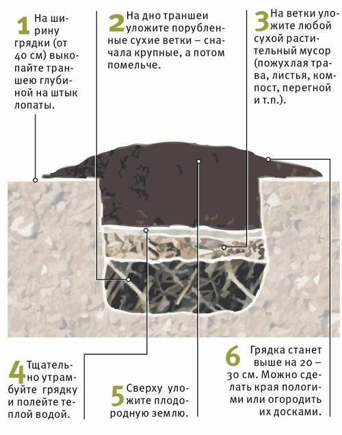 Как лучше сделать грядки для овощей - Kuente.ru
