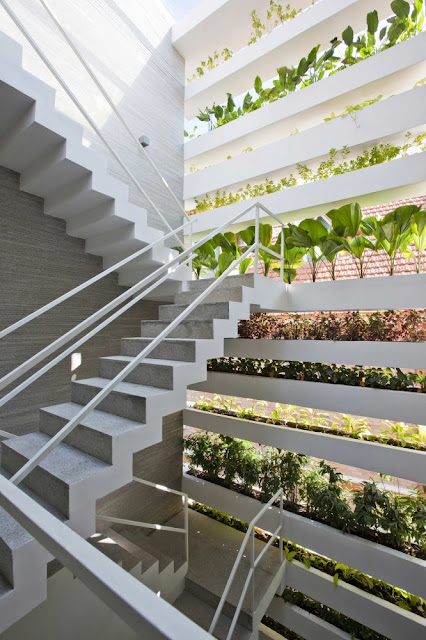 Photo of concrete staircase protected with the facade and vegetation