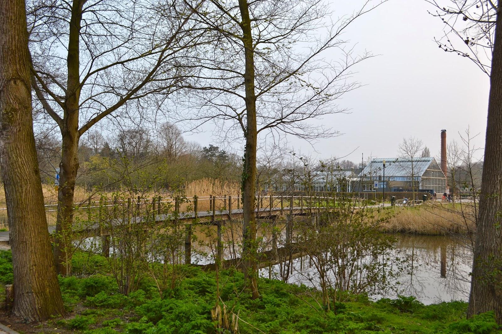 Alexandra D. Foster Destinations Perfected: Amsterdam, Netherlands ...