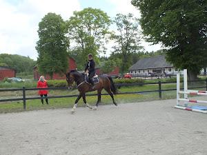 Ny häst på ingång till Ronja!!