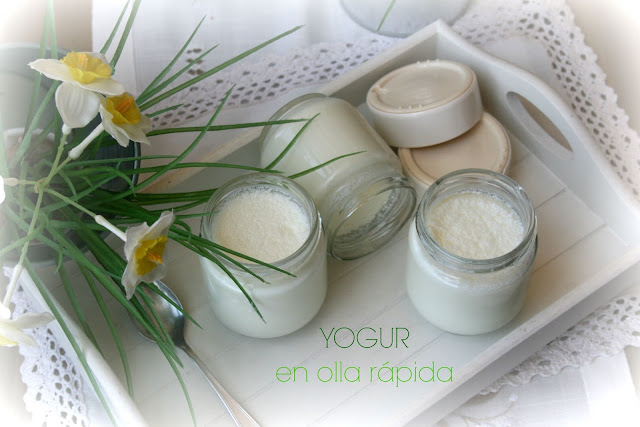 yogur casero, yogur en olla rápida, Cookeo, Moulinex