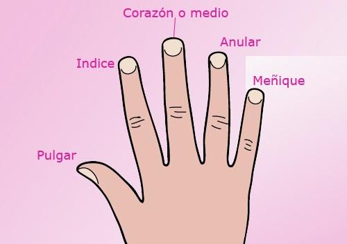 dedos para maquillarte