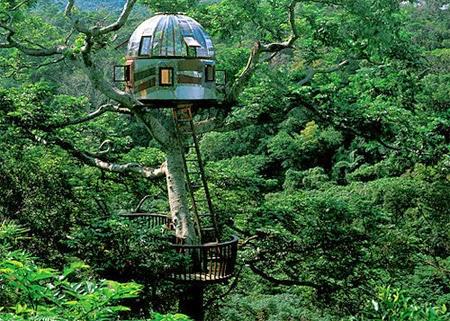 Beach Rock Tree House [lensaglobe.com]