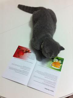 Bepanthol bakım önerileri papatya çayı tarifi