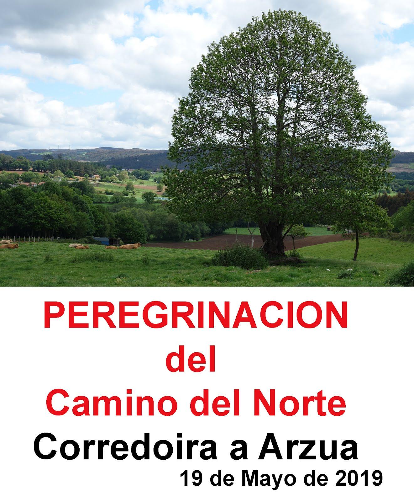 Corredoira _ Arzúa
