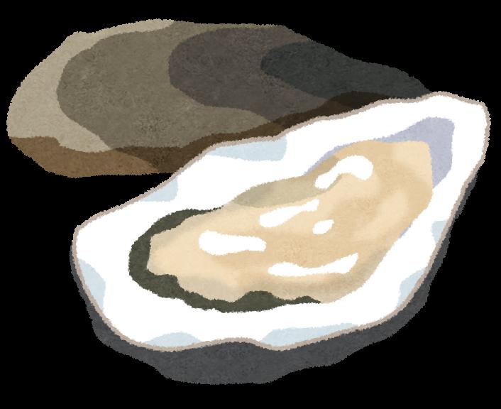 冬の味覚、牡蠣のイラストです ...
